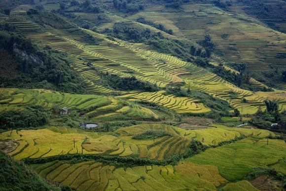 Sa Pa, Lào Cai Province