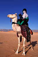 Tuareg on camel